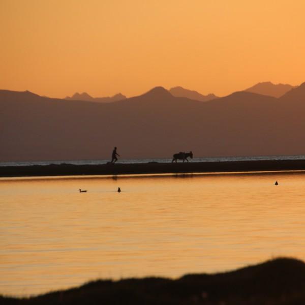 אגם סון קול קירגיסטן