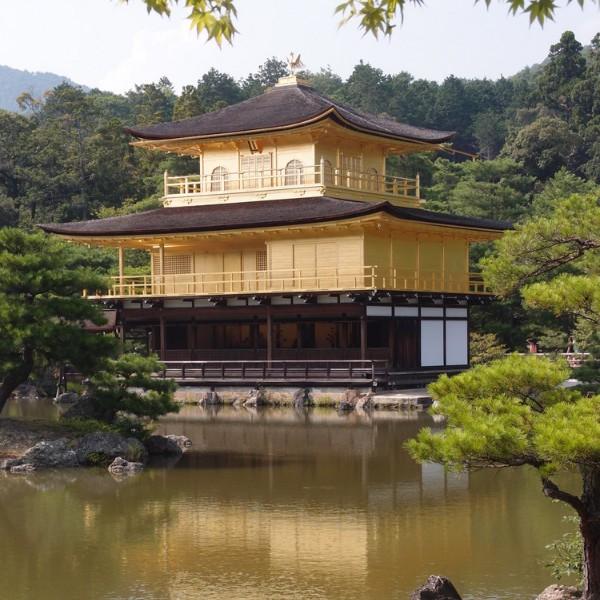 המקדש המוזהב קיוטו יפן