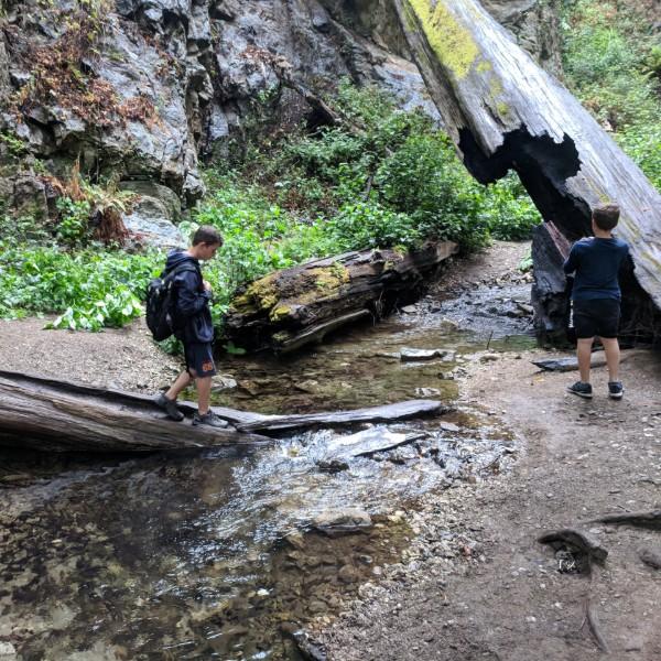 טיול בשמורות טבע במערב ארצות הברית
