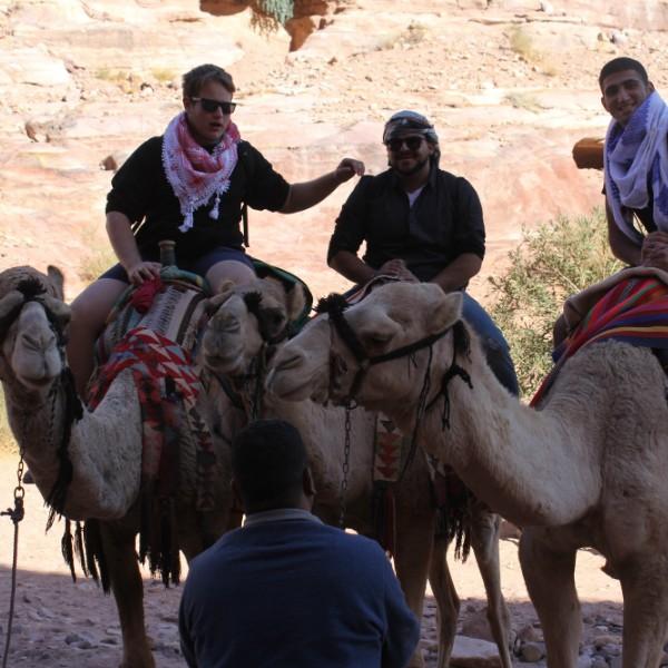 פטרה טיול עצמאי בירדן