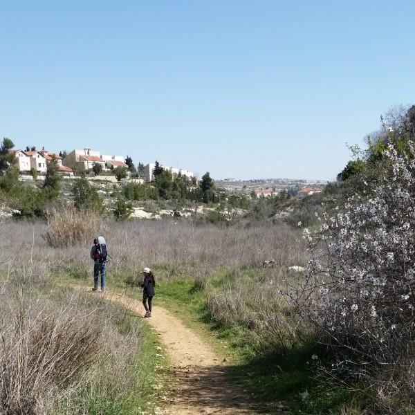 מסלול חד יומי הרי ירושלים